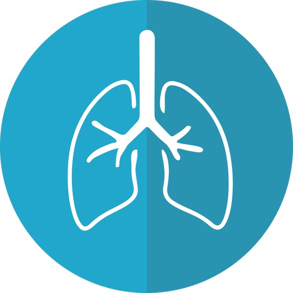 Profesjonalny oczyszczacz powietrza
